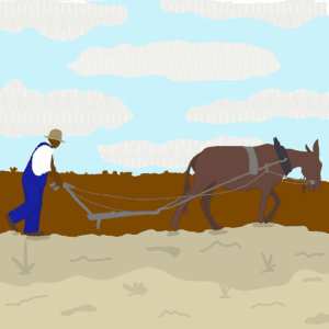 Illustration - man behind mule, farming